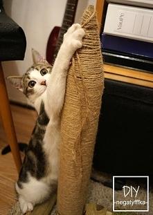 Koci drapak DIY