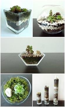 super pomysł na prezent!