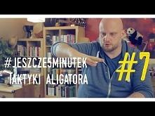 Taktyka aligatora- rekolekcje adwentowe o. Adam Szustak