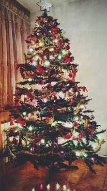 christmas is coming :]