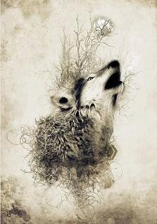 wyjący wilk :)
