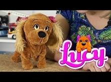 Lucy Interaktywny Piesek , TM Toys