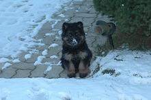 Maleństwo i jej pierwszy śnieg w życiu :*