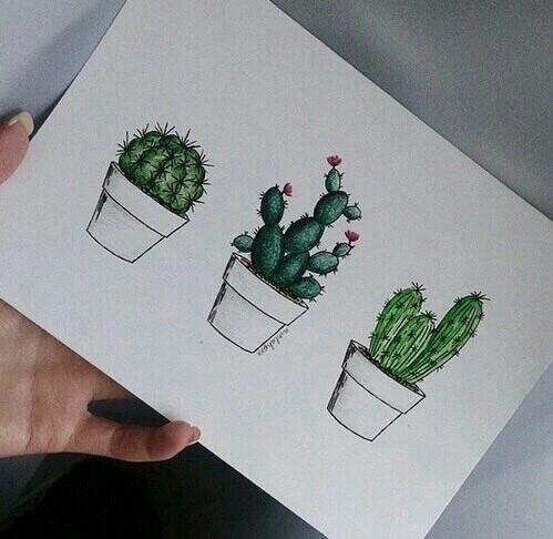 Cudowne. Uwielbiam kaktusy.