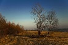 Zima w Bieszczadach - Nowy ...