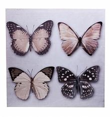 Obraz na ścianę , kwadratowy w beżowe kolory -  motyle. Piękna dekoracja do p...