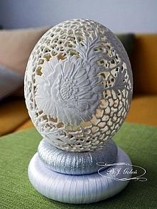 strusie jajko