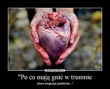 #serce #dla #serca