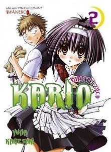 Karin nie jest zwykłą osobą, właściwe to nawet nie jest człowiekiem, a wampirem. Takim normalnym wampirem zresztą też nie jest... Pewnego dnia w jej szkole pojawia się nowy ucze...