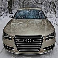 Audi oooo.