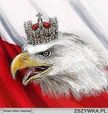 Polska upada