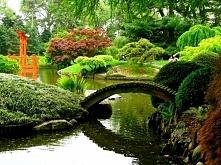 botanical-garden-brooklyn