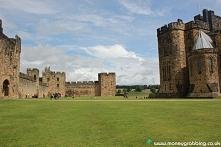dziedziniec zamku alnwick castle