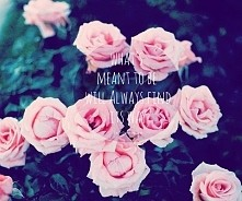What's meant to be will always find its way...