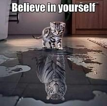 W małym kotku drzemie tygrys