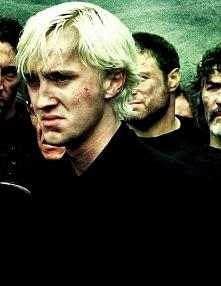 Co myślicie o Draco? Mi oso...