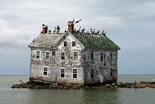 Abandoned Isle, Netherlands...