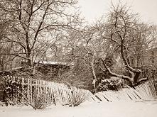 Zima 2015.