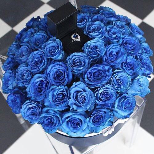 9b76c10df5a025 Niebieskie róże, pierścionek z oczkiem <3 jak dla mnie bosk.. na Mój ...