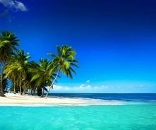 piasek palmy i sloneczko