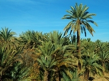 Widoki z Maroka