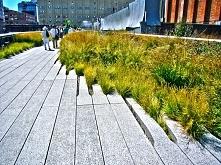 The High Line, NY Park założony na nieużywanych liniach kolejowych nad ulicam...