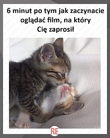 Hah ;)