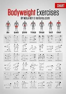 Ćwiczenia na wszystkie partie ciała