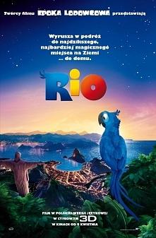 """Bajka: Rio jest również 2 część: """"Rio 2"""""""