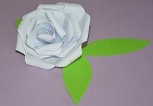 Róża z papieru, po kliknięciu instrukcja złożenia krok po kroku.
