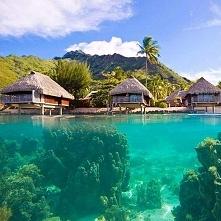 Wyspa Moorea