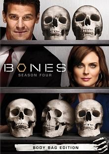 Kości/ Bones