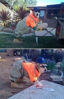 Zaufaj mi, jestem inżynierem.