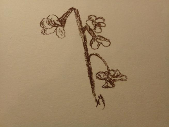 kilka rysunków i dwie strony z albumu DIY :) (klik)