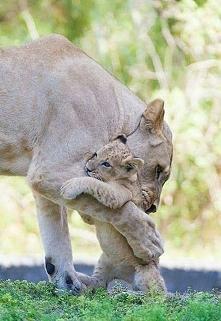 Mama przytuli