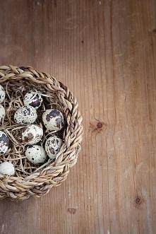 Spokojnych i radosnych Świąt Wielkanocnych, zasłużonego odpoczynku oraz wiosennego nastroju, życzy cała ekipa sklepu Olive.pl!