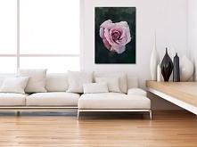 Kwiat róży - nowoczesny obraz na płótnie