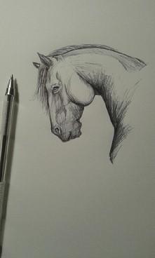 Wzorowany konik rysowaniy długopisem 20 minut xD . Jak się podoba ? ♡♡