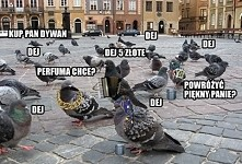 Polski chodnik...