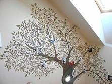 Drzewo genealogiczne na ści...
