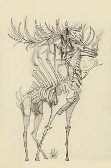 Draw *.*