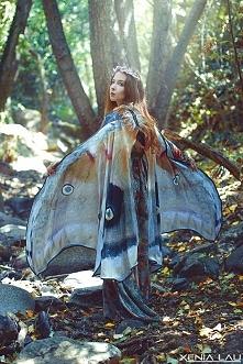 chusta - skrzydła motyka. W...
