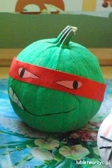 Wojowniczy żółw ninja na Ha...