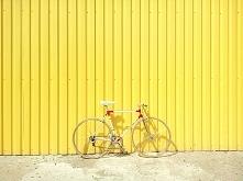 Co daje jazda na rowerze? Z...