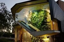 Pionowy ogród, ogród wertykalny, zielone ściany - zobacz jak takie zaprojektować, jak wygląda pionowy ogród zarówno we wnętrzu, jak i na zewnątrz budynku - zapraszam na zielony ...