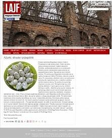 ażurowe pisanki gęsie - BJGoleń Poniatowa Polska