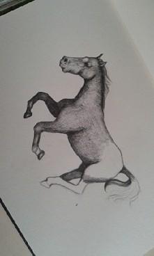 Jak się podoba ? Wzorowany koń wykonany ołówkami 4b 7b hb . Czas to jak dotąd 3h