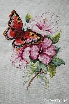Motylek na kwiatku - haft krzyżykowy