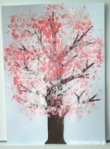 Kwitnąca wiśnia - drzewo ma...