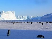 Wyprawa na biegun południow...